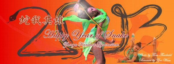ZKG FB Cover-Year of Snake 2013-Zoe-850x315